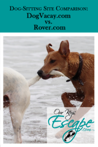 DogVacay vs Rover: A dog-sitting site comparison